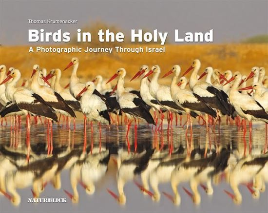 Birds in the Holy Land / Thomas Krumenacker