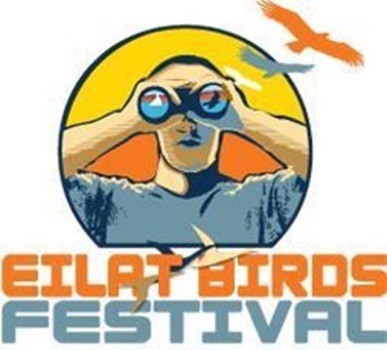 Eilat-Birds-Festival-Logo