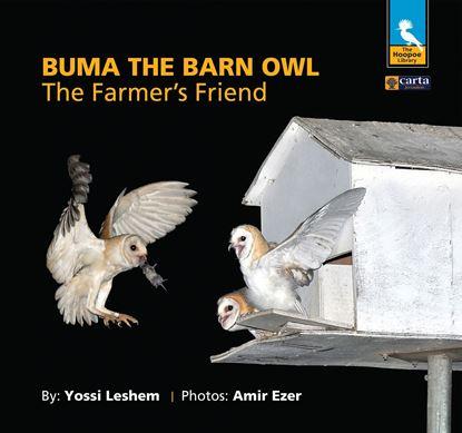 Buma the Barn Owl - The Farmer's Friend